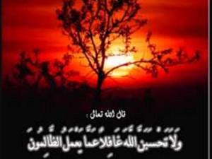 11201428202346 300x225 - چرا خداوند آدمهای ظالم و ستمکار را نابود نمی کند؟