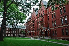 untitled9 - دانشگاه هاروارد به حقوق اسلام میپردازد