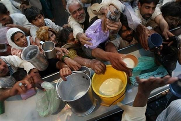 1227155173bmalkraporu - ارقام وحشت بار اسراف مواد غذایی در جهان