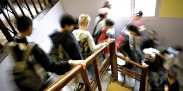 28517 - احزاب دانمارک مصرف گوشت خوک در مدارس این کشور را برای مسلمانان اجباری اعلام کردند