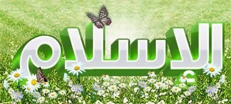 3315 - اسلام را به من معرفی کنید: مسلمان کیست؟