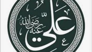 Screenshot ۲۰۲۱۰۷۲۷ ۰۰۲۳۵۳ Google 390x220 - اهل سنت معتقد به خلافت و امامت بلافصل حضرت علی نیستند
